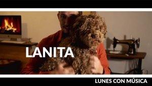 Lanita